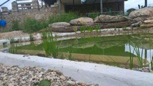venturada-piscina-natural-4