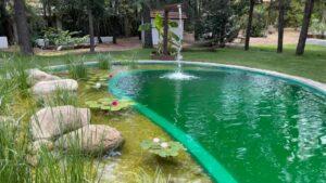 piscina-natural-empresa-construir-4