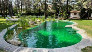 piscina-natural-empresa-construir-8